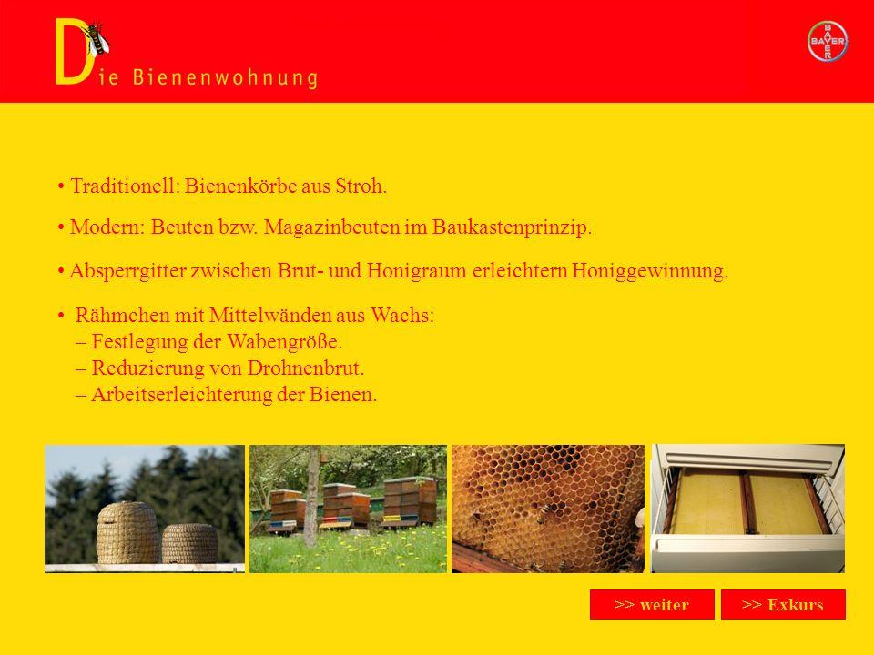 Modern: Beuten bzw. Magazinbeuten im Baukastenprinzip. Traditionell: Bienenkörbe aus Stroh. Absperrgitter zwischen Brut- und Honigraum erleichtern Hon