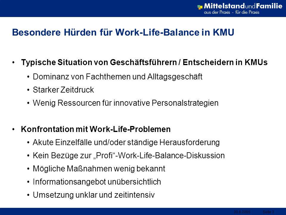 30.6.2005Seite 3 Besondere Hürden für Work-Life-Balance in KMU Typische Situation von Geschäftsführern / Entscheidern in KMUs Dominanz von Fachthemen