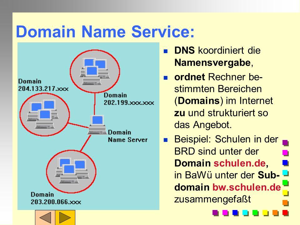 Organisationscodes: In den USA, wo das Internet erfunden wurde, wird die Art der Organisation, die den Server betreibt, angegeben: govRegierung milMil