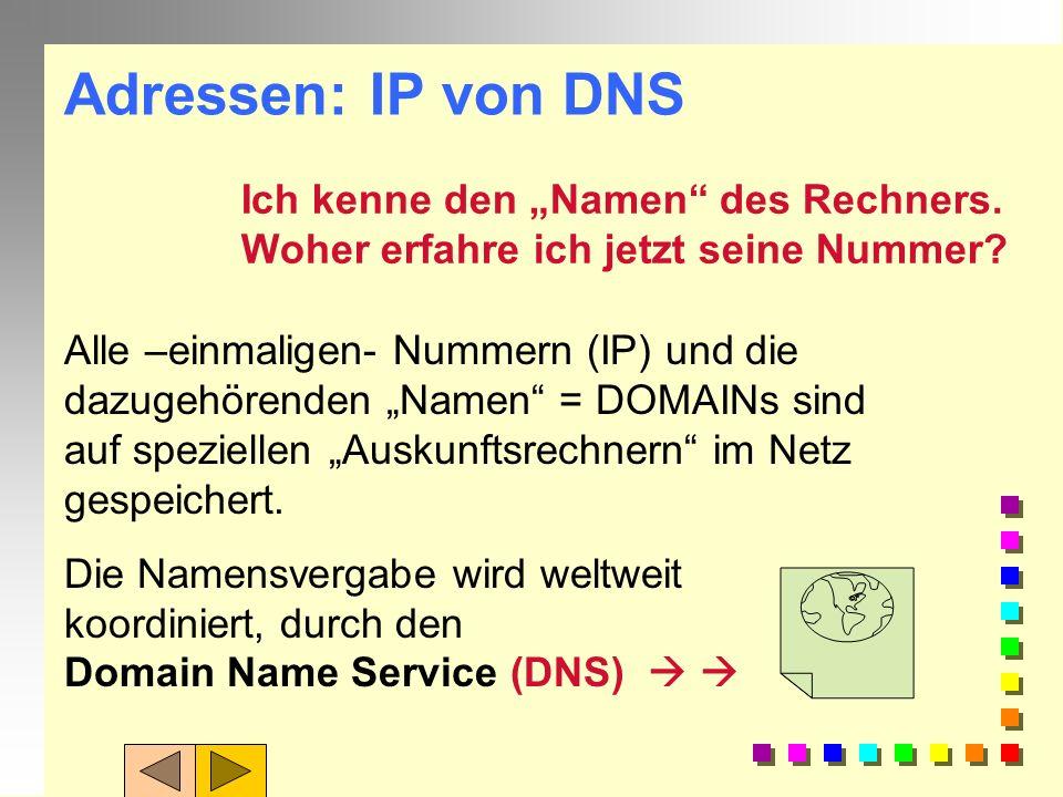 IP-Adresse: n Computer arbeiten besser mit Zahlen.Zahlen n Jedes Gerät ( PC, Server, Drucker,...) im Internet hat deshalb eine einmalige Nummer. (entw