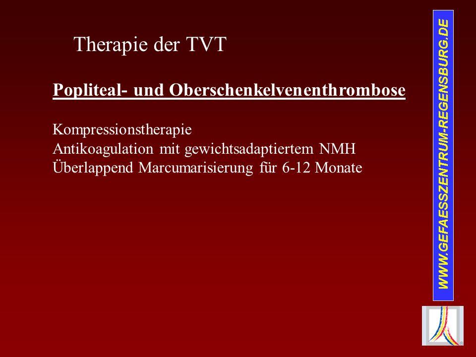 WWW.GEFAESSZENTRUM-REGENSBURG.DE Therapie der TVT Popliteal- und Oberschenkelvenenthrombose Kompressionstherapie Antikoagulation mit gewichtsadaptiert