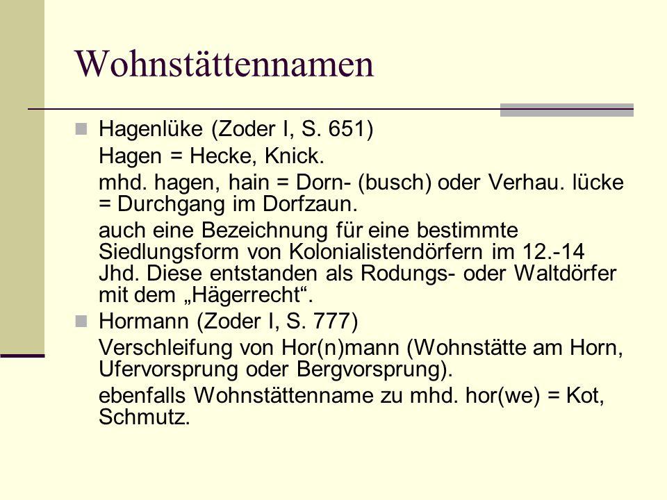Wohnstättennamen Hagenlüke (Zoder I, S. 651) Hagen = Hecke, Knick. mhd. hagen, hain = Dorn- (busch) oder Verhau. lücke = Durchgang im Dorfzaun. auch e