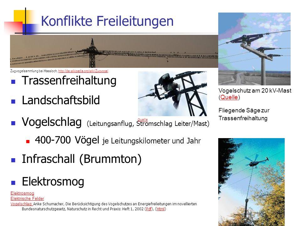 WS 06/07 Energieplanung, Verkehrsplanung, Wasserwirtschaft56 Konflikte Freileitungen Trassenfreihaltung Landschaftsbild Vogelschlag (Leitungsanflug, S