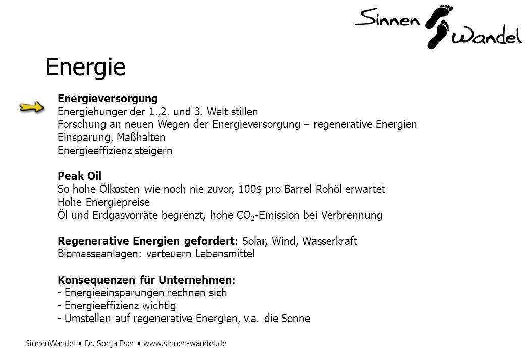SinnenWandel Dr. Sonja Eser www.sinnen-wandel.de Energie Energieversorgung Energiehunger der 1.,2. und 3. Welt stillen Forschung an neuen Wegen der En