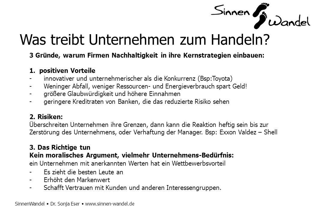 SinnenWandel Dr. Sonja Eser www.sinnen-wandel.de Was treibt Unternehmen zum Handeln? 3 Gründe, warum Firmen Nachhaltigkeit in ihre Kernstrategien einb
