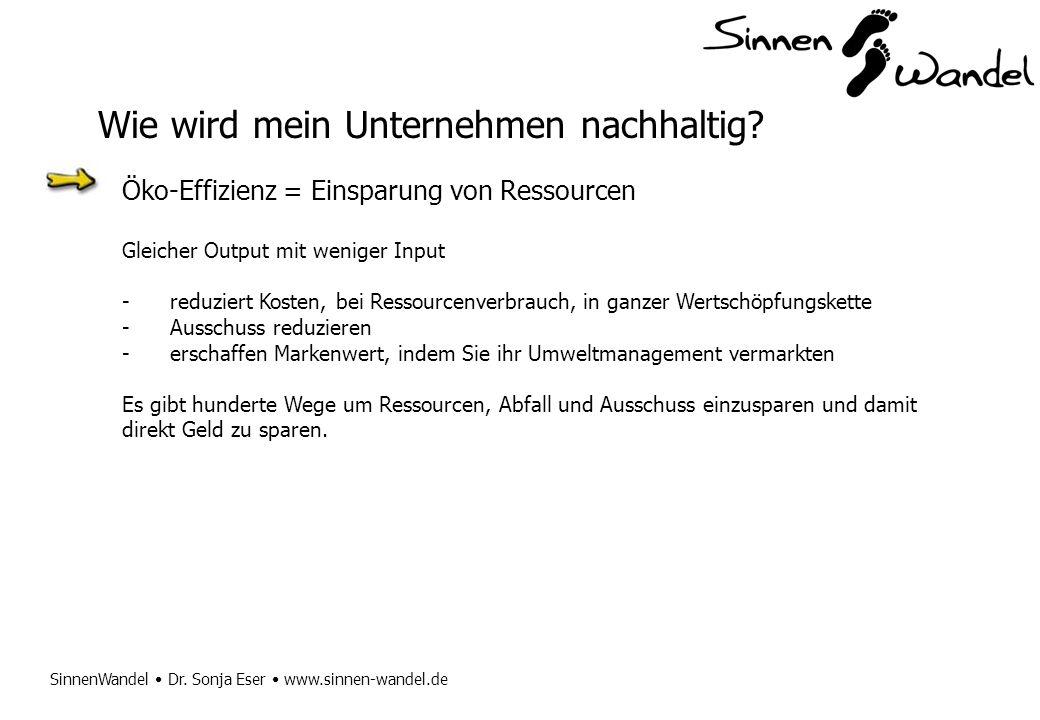 SinnenWandel Dr. Sonja Eser www.sinnen-wandel.de Öko-Effizienz = Einsparung von Ressourcen Gleicher Output mit weniger Input -reduziert Kosten, bei Re