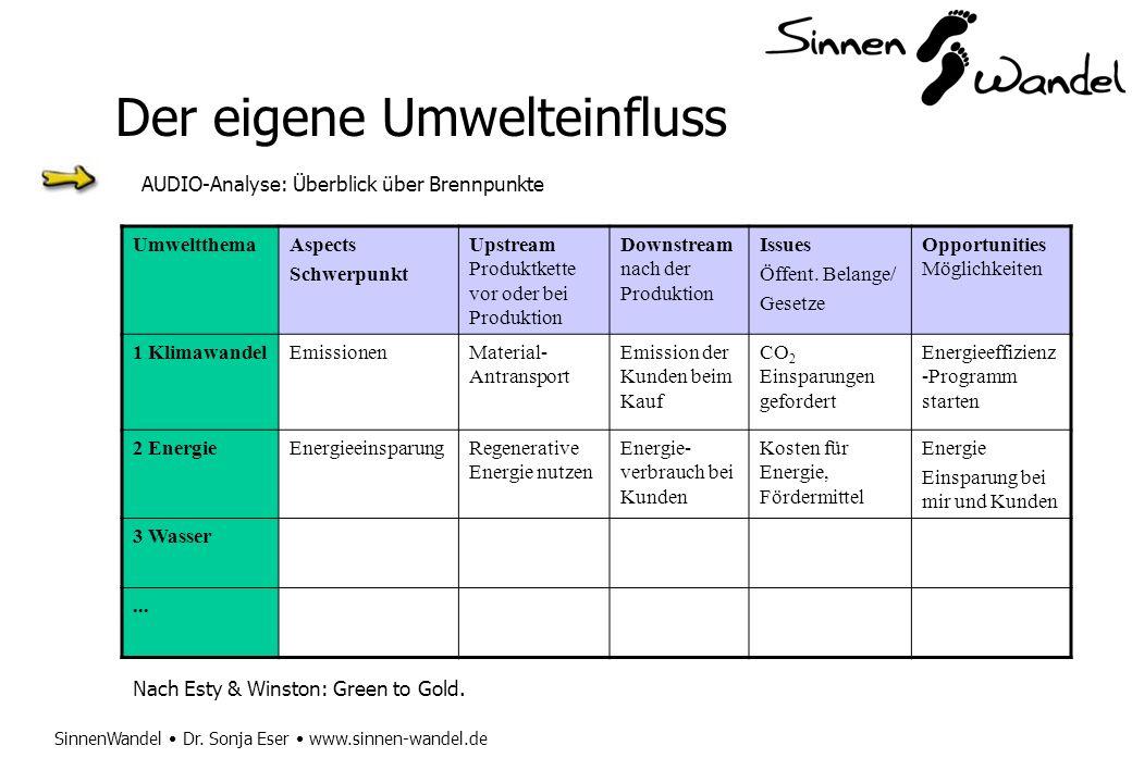 SinnenWandel Dr. Sonja Eser www.sinnen-wandel.de Der eigene Umwelteinfluss AUDIO-Analyse: Überblick über Brennpunkte UmweltthemaAspects Schwerpunkt Up