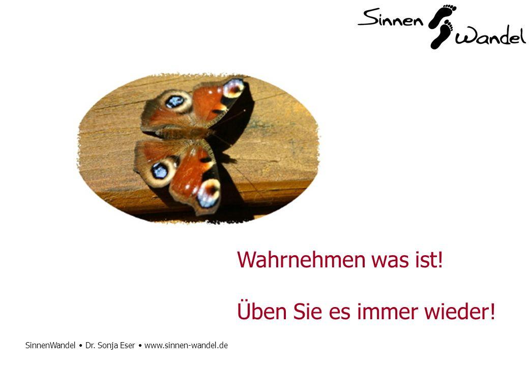 SinnenWandel Dr. Sonja Eser www.sinnen-wandel.de Wahrnehmen was ist! Üben Sie es immer wieder!