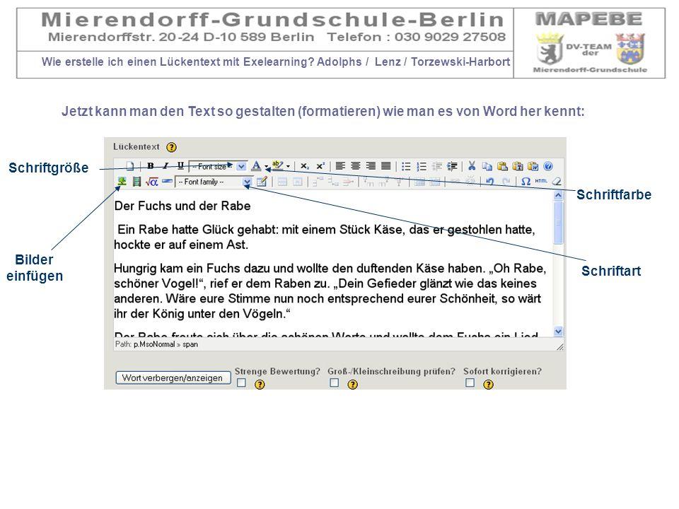 Wie erstelle ich einen Lückentext mit Exelearning? Adolphs / Lenz / Torzewski-Harbort Jetzt kann man den Text so gestalten (formatieren) wie man es vo