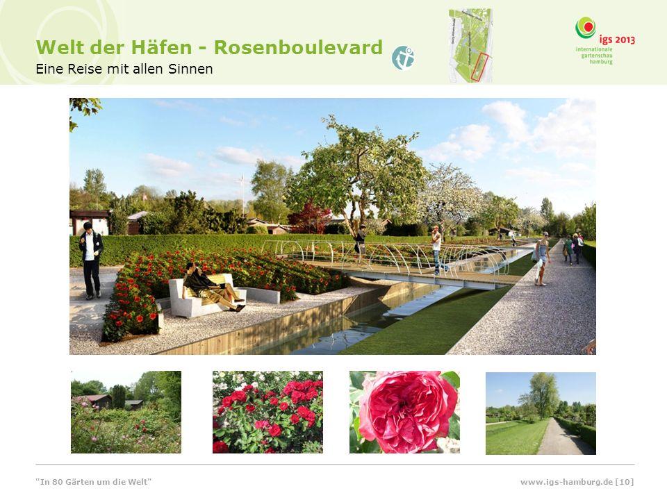 Eine Reise mit allen Sinnen Welt der Häfen - Rosenboulevard In 80 Gärten um die Welt www.igs-hamburg.de [10]