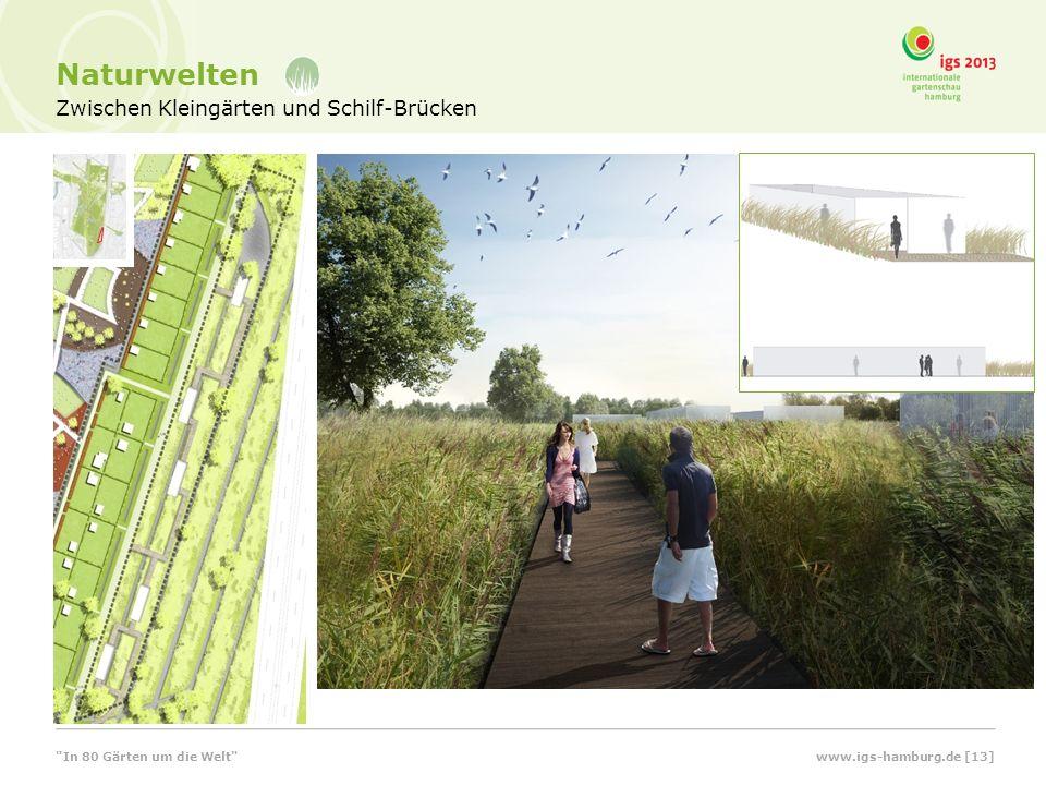 Zwischen Kleingärten und Schilf-Brücken Naturwelten www.igs-hamburg.de [13] In 80 Gärten um die Welt