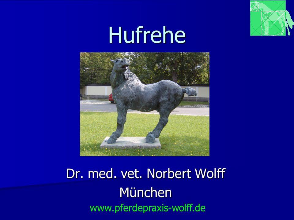 Hufrehe Dr. med. vet. Norbert Wolff München www.pferdepraxis-wolff.de