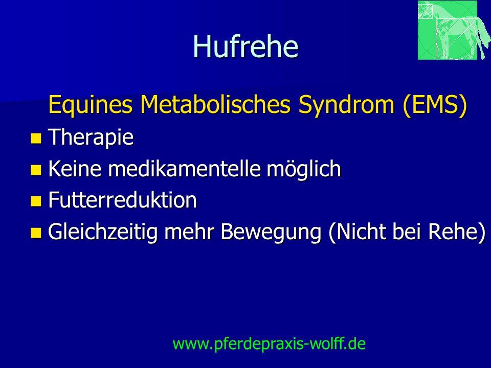 Hufrehe Equines Metabolisches Syndrom (EMS) Therapie Therapie Keine medikamentelle möglich Keine medikamentelle möglich Futterreduktion Futterreduktio