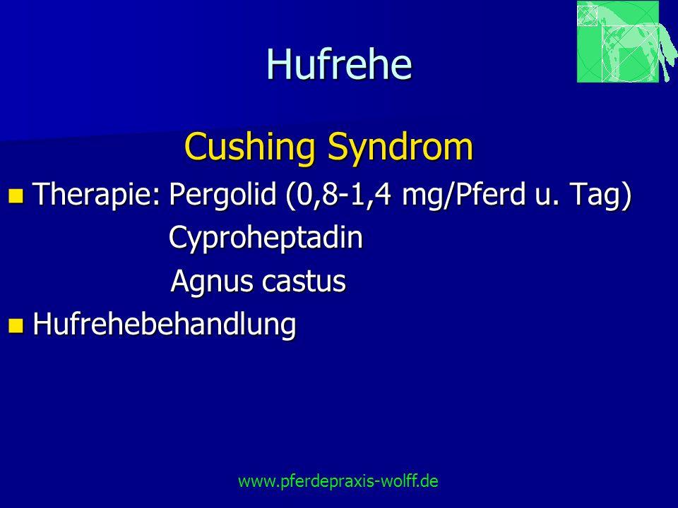 Hufrehe Cushing Syndrom Therapie: Pergolid (0,8-1,4 mg/Pferd u. Tag) Therapie: Pergolid (0,8-1,4 mg/Pferd u. Tag) Cyproheptadin Cyproheptadin Agnus ca