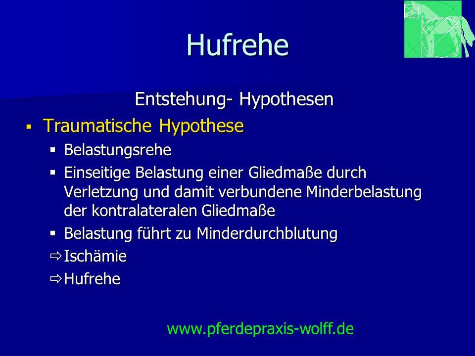 Hufrehe Entstehung- Hypothesen Traumatische Hypothese Traumatische Hypothese Belastungsrehe Belastungsrehe Einseitige Belastung einer Gliedmaße durch