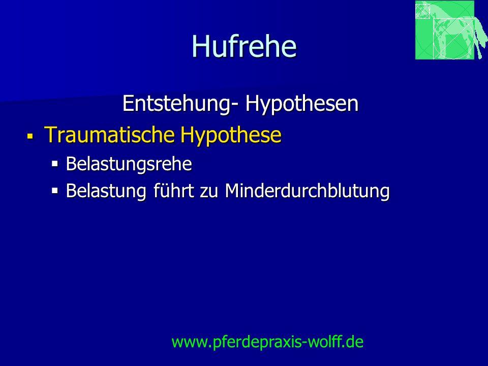 Hufrehe Entstehung- Hypothesen Traumatische Hypothese Traumatische Hypothese Belastungsrehe Belastungsrehe Belastung führt zu Minderdurchblutung Belas