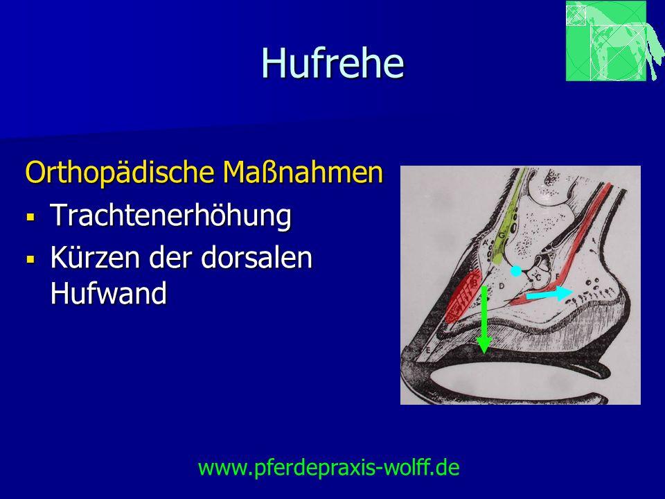 Hufrehe Orthopädische Maßnahmen Trachtenerhöhung Trachtenerhöhung Kürzen der dorsalen Hufwand Kürzen der dorsalen Hufwand www.pferdepraxis-wolff.de