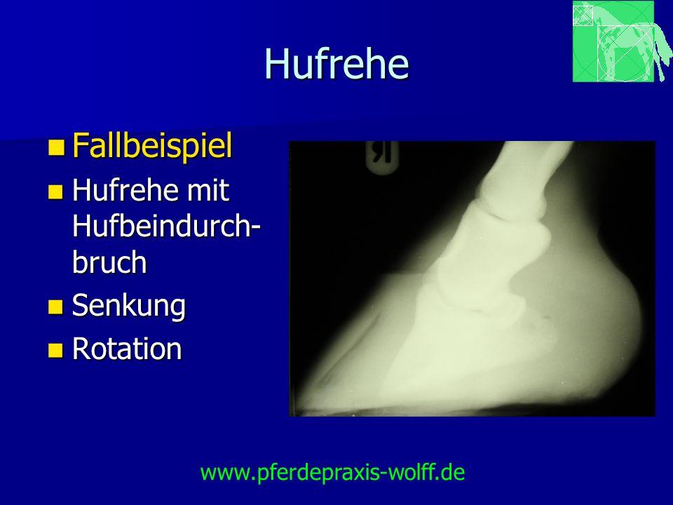 Hufrehe Fallbeispiel Fallbeispiel Hufrehe mit Hufbeindurch- bruch Hufrehe mit Hufbeindurch- bruch Senkung Senkung Rotation Rotation www.pferdepraxis-w