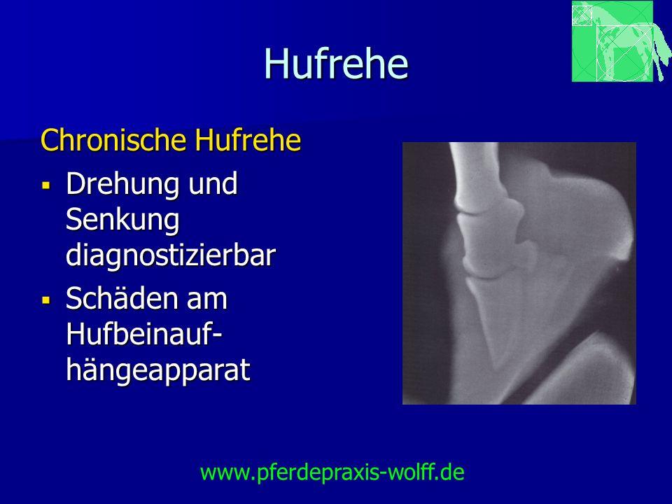 Hufrehe Rehegips Rehegips Vorteil: Vorteil: Kostengünstig Kostengünstig Einfach und schnell anzulegen Einfach und schnell anzulegen www.pferdepraxis-wolff.de