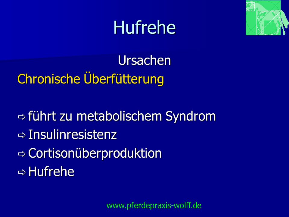Hufrehe Equines Metabolisches Syndrom (EMS) Insulinresistenz Insulinresistenz Ursache: chron.