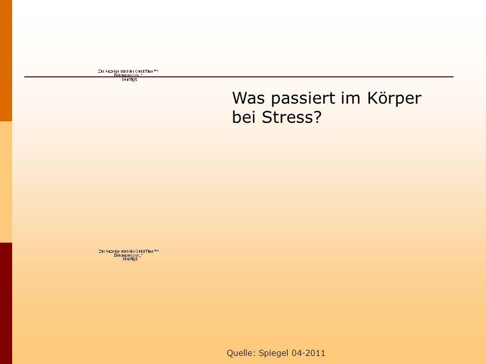Quelle: Spiegel 04-2011 Was passiert im Körper bei Stress?
