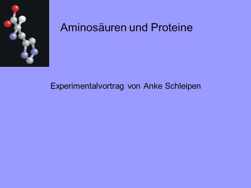Aminosäuren und Proteine Experimentalvortrag von Anke Schleipen