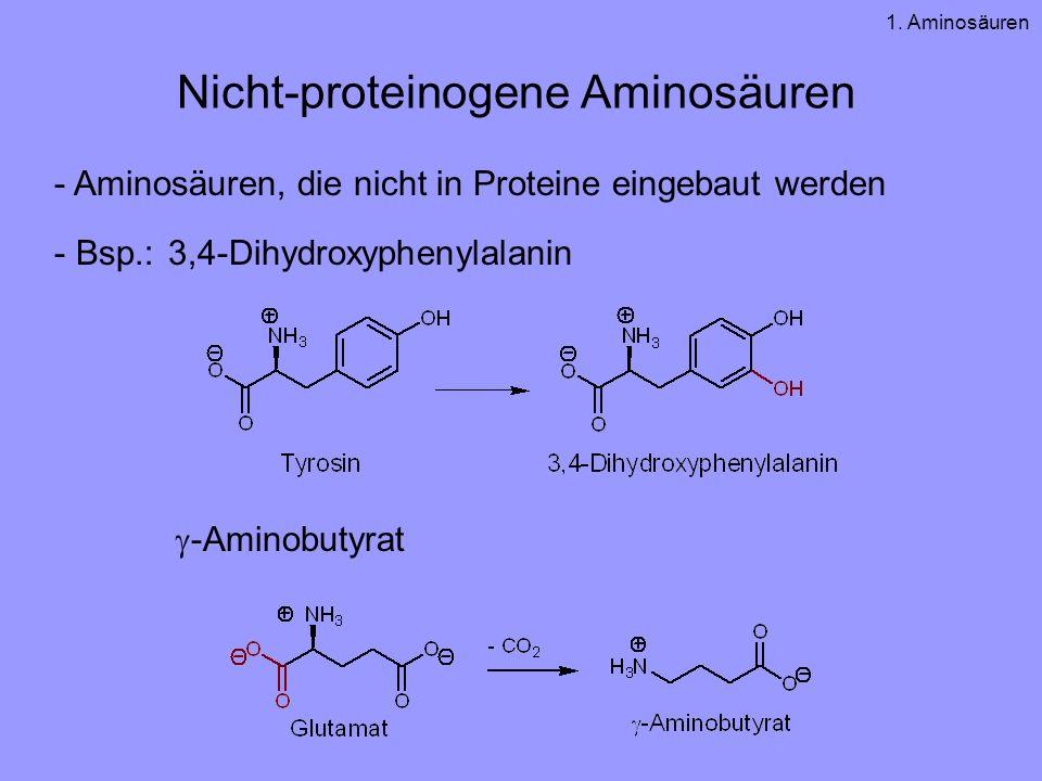 Nicht-proteinogene Aminosäuren - Aminosäuren, die nicht in Proteine eingebaut werden - Bsp.: 3,4-Dihydroxyphenylalanin -Aminobutyrat 1. Aminosäuren