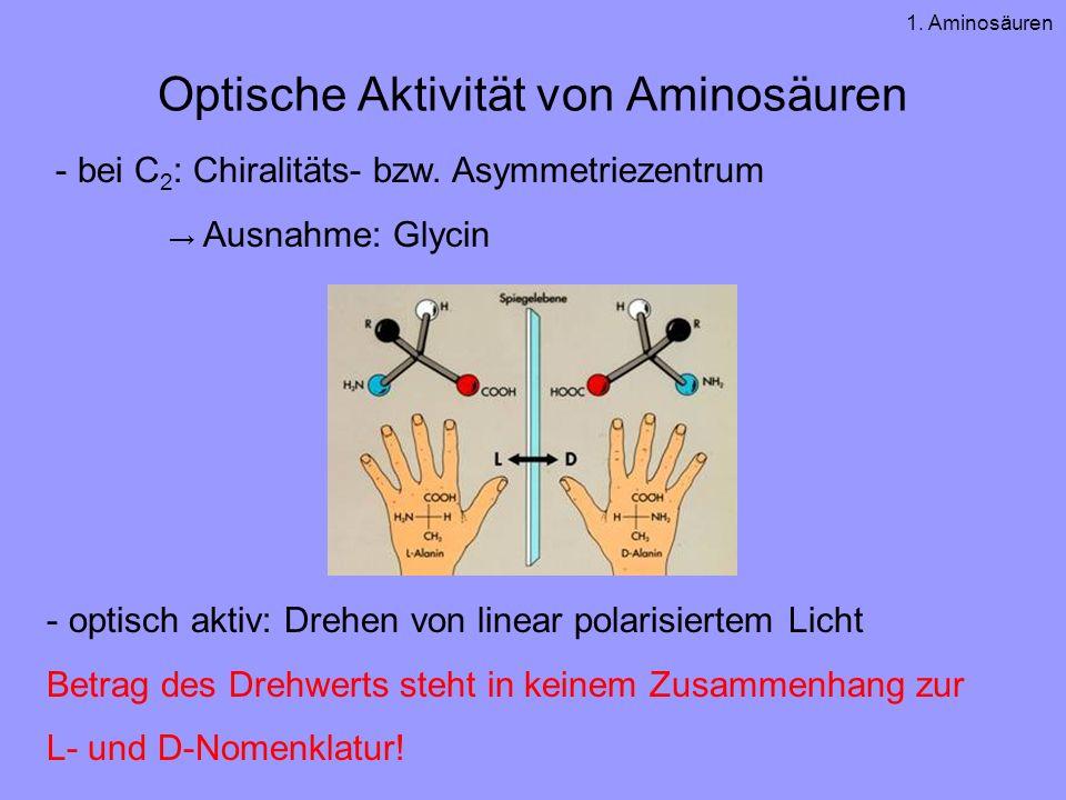 Optische Aktivität von Aminosäuren - bei C 2 : Chiralitäts- bzw. Asymmetriezentrum Ausnahme: Glycin - optisch aktiv: Drehen von linear polarisiertem L