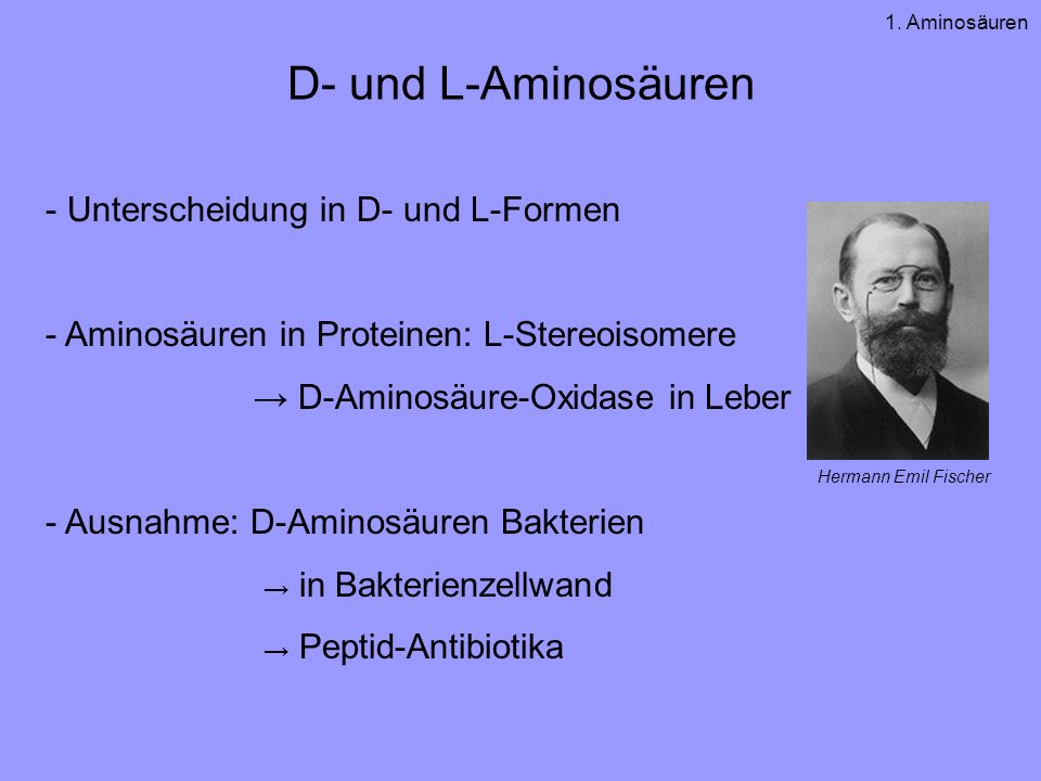 D- und L-Aminosäuren - Unterscheidung in D- und L-Formen - Aminosäuren in Proteinen: L-Stereoisomere D-Aminosäure-Oxidase in Leber - Ausnahme: D-Aminosäuren Bakterien in Bakterienzellwand Peptid-Antibiotika Hermann Emil Fischer 1.