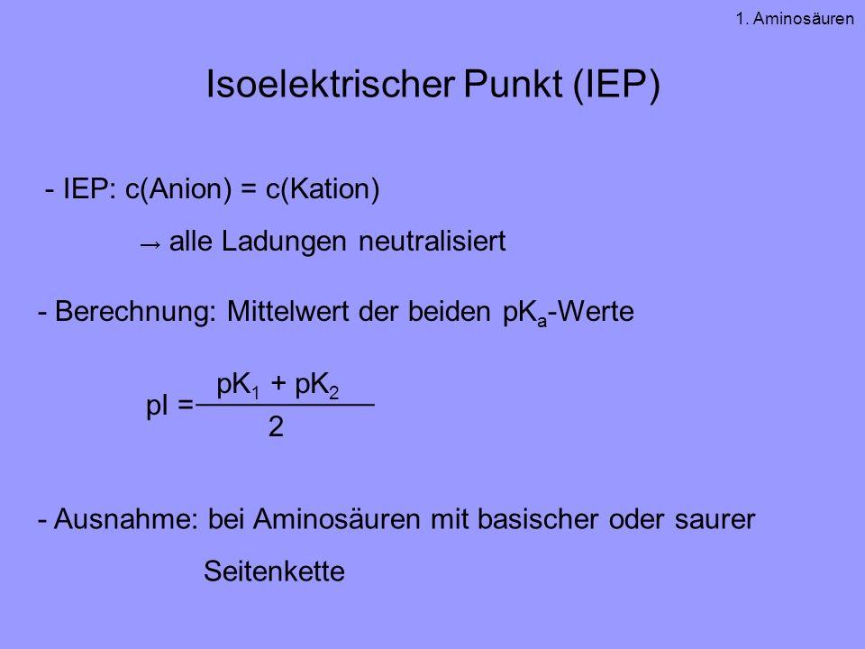 Isoelektrischer Punkt (IEP) - IEP: c(Anion) = c(Kation) alle Ladungen neutralisiert - Berechnung: Mittelwert der beiden pK a -Werte - Ausnahme: bei Aminosäuren mit basischer oder saurer Seitenkette pI = ___________ pK 1 + pK 2 2 1.