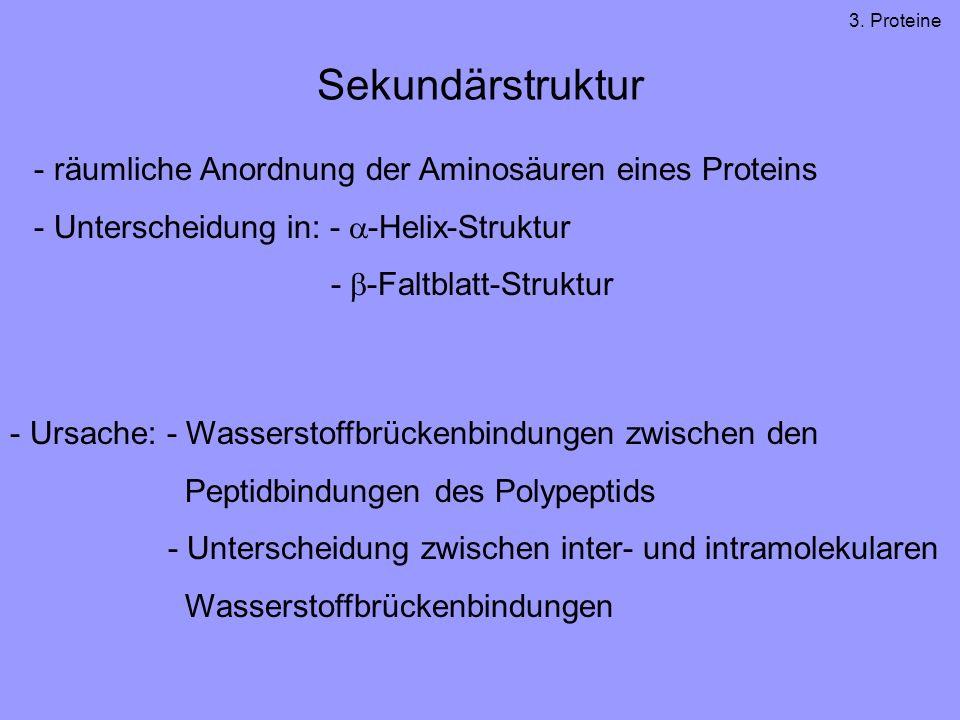 Sekundärstruktur - räumliche Anordnung der Aminosäuren eines Proteins - Unterscheidung in: - -Helix-Struktur - -Faltblatt-Struktur - Ursache: - Wasser