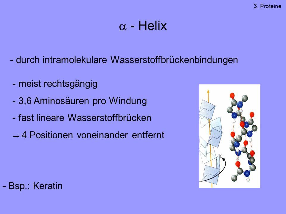- Helix - durch intramolekulare Wasserstoffbrückenbindungen - meist rechtsgängig - 3,6 Aminosäuren pro Windung - fast lineare Wasserstoffbrücken 4 Positionen voneinander entfernt - Bsp.: Keratin 3.