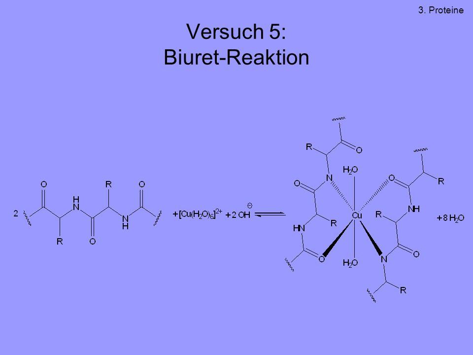 Versuch 5: Biuret-Reaktion 3. Proteine
