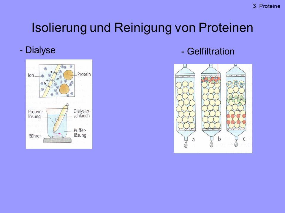 Isolierung und Reinigung von Proteinen - Dialyse - Gelfiltration 3. Proteine