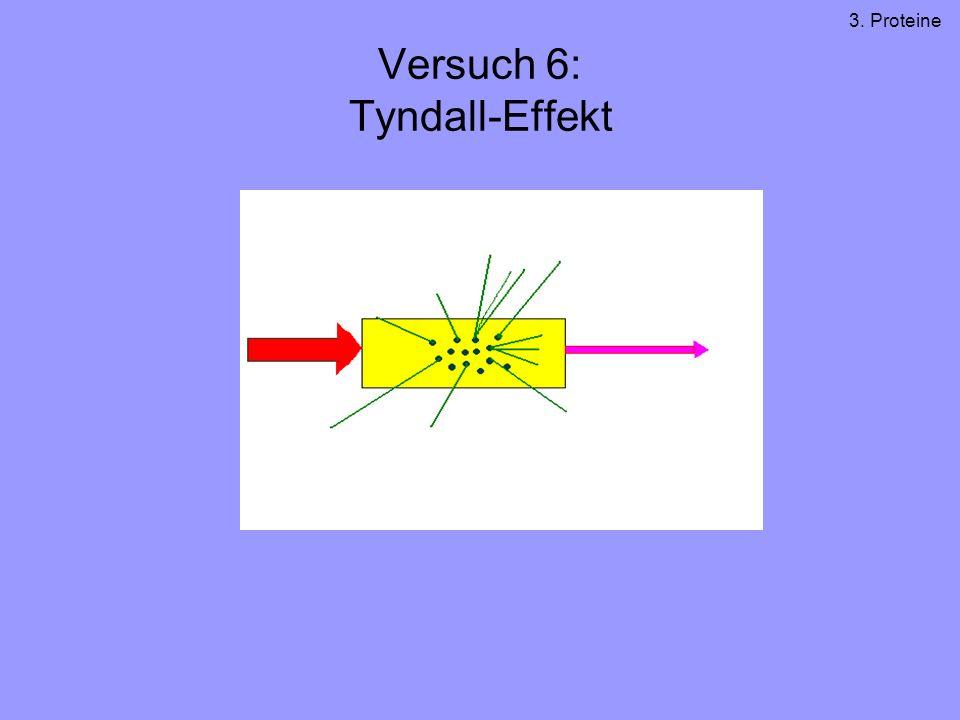 Versuch 6: Tyndall-Effekt 3. Proteine