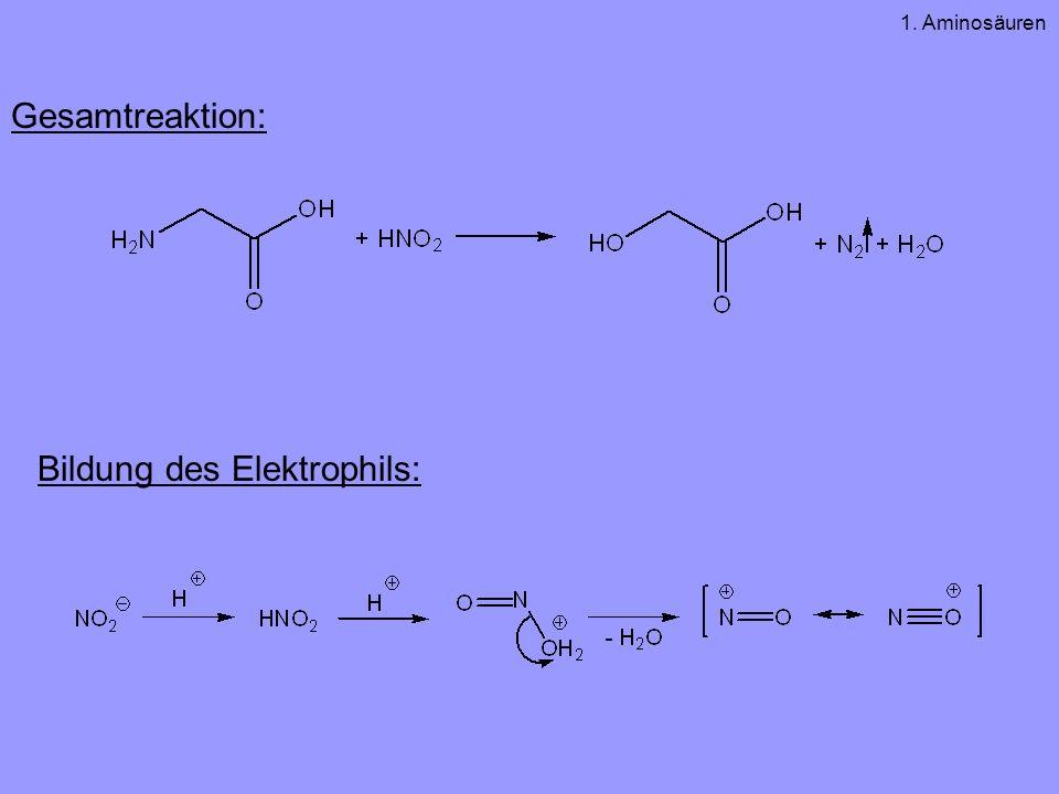 Gesamtreaktion: Bildung des Elektrophils: 1. Aminosäuren
