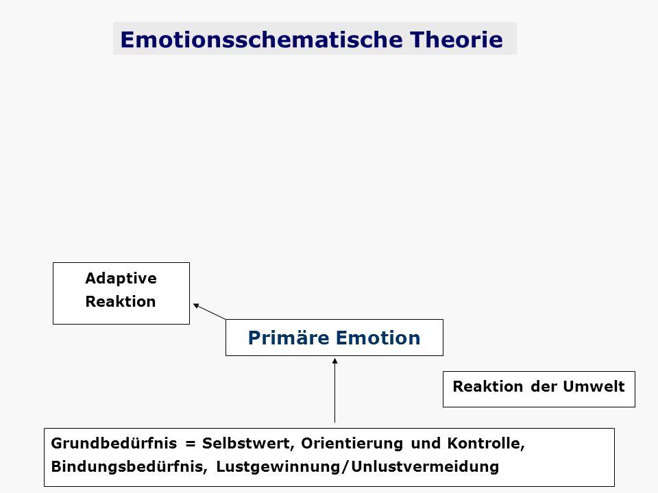 Grundbedürfnis = Selbstwert, Orientierung und Kontrolle, Bindungsbedürfnis, Lustgewinnung/Unlustvermeidung Primäre Emotion Reaktion der Umwelt Emotion