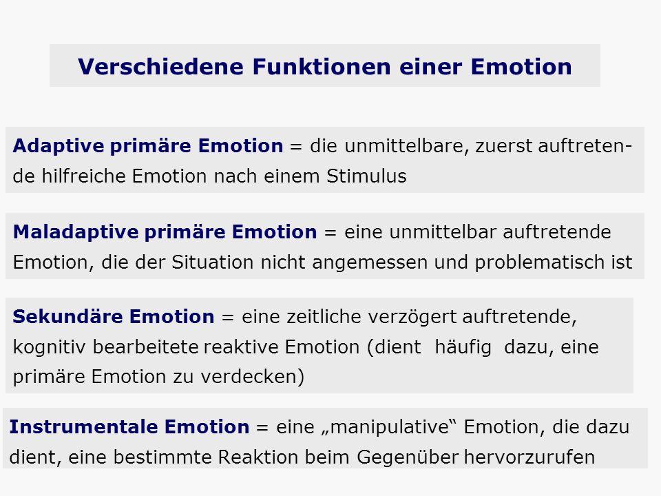 Instrumentale Emotion = eine manipulative Emotion, die dazu dient, eine bestimmte Reaktion beim Gegenüber hervorzurufen Adaptive primäre Emotion = die