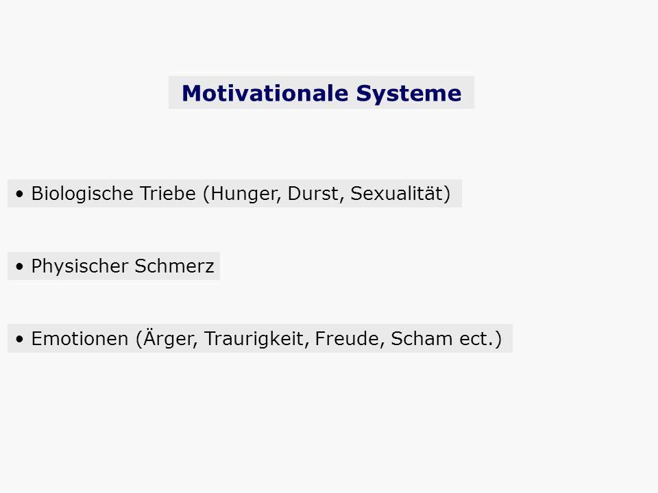 Motivationale Systeme Biologische Triebe (Hunger, Durst, Sexualität) Physischer Schmerz Emotionen (Ärger, Traurigkeit, Freude, Scham ect.)