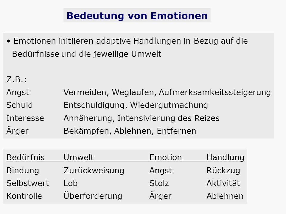 Bedeutung von Emotionen Emotionen initiieren adaptive Handlungen in Bezug auf die Bedürfnisse und die jeweilige Umwelt Z.B.: AngstVermeiden, Weglaufen