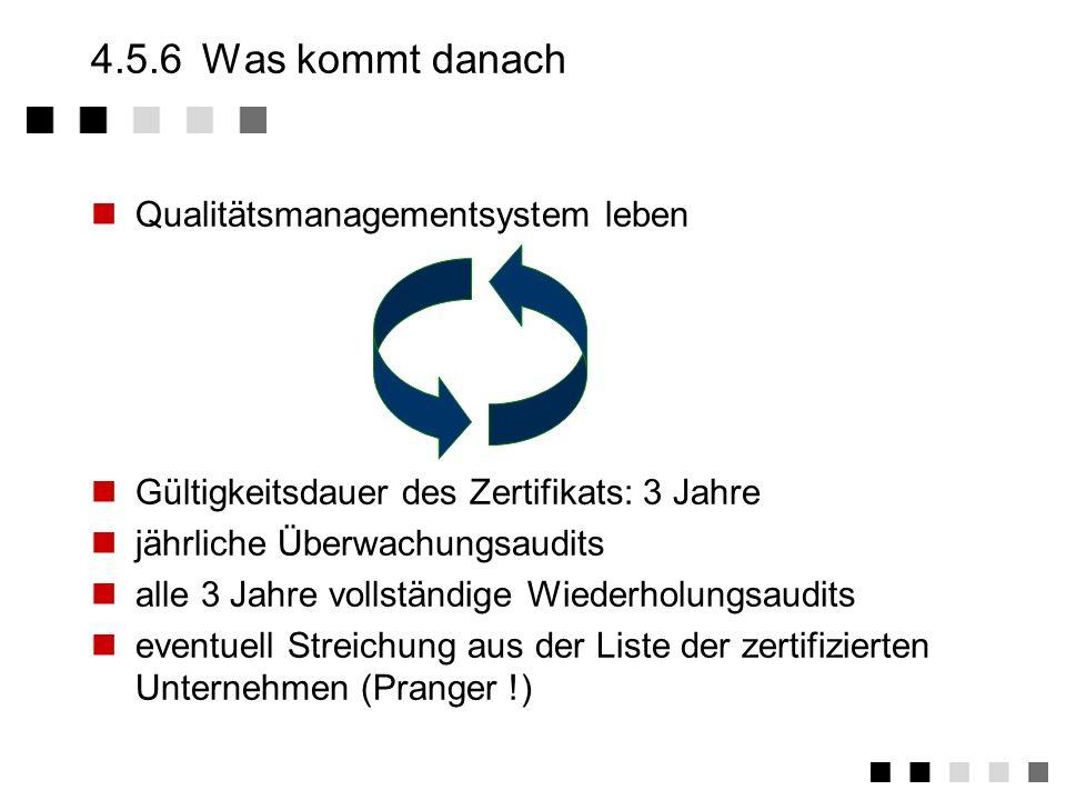 4.5.5Das Audit - Fragen Ist dieses Vorgehen dokumentiert - kann ich das sehen ? Wer stellt die Eingabe dafür zur Verfügung - wie validieren Sie die Ei