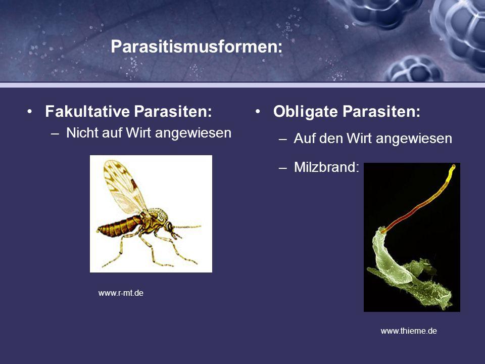 Parasitismusformen: Fakultative Parasiten: –Nicht auf Wirt angewiesen Obligate Parasiten: –Auf den Wirt angewiesen –Milzbrand: www.r-mt.de www.thieme.
