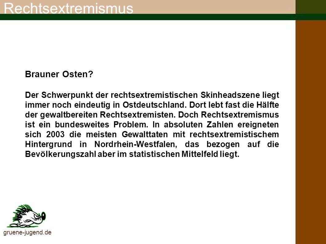 Rechtsextreme Szene gruene-jugend.de (Quelle: Verfassungsschutz, August 2004) Gewaltbereite RechtsextremistInnen 1993 bis 2003