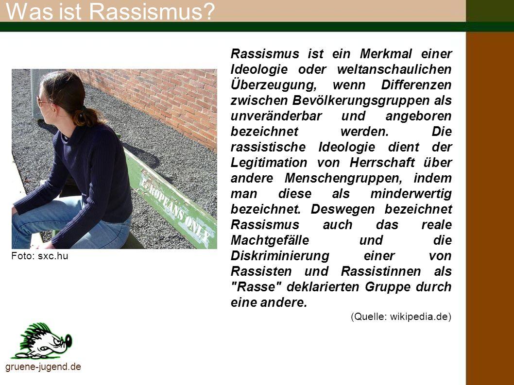 Rechtsextreme Szene Dem Verfassungsschutz waren Ende 2003 169 rechtsextreme Organisationen bekannt (vgl.