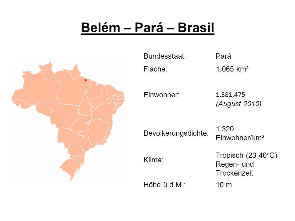Austauschmöglichkeiten Gastsemester an der Universidade da Amazonia UNAMA in Belém do Pará Auslandspraktikum in einer sozialen Einrichtung, organisiert mit Hilfe der UNAMA