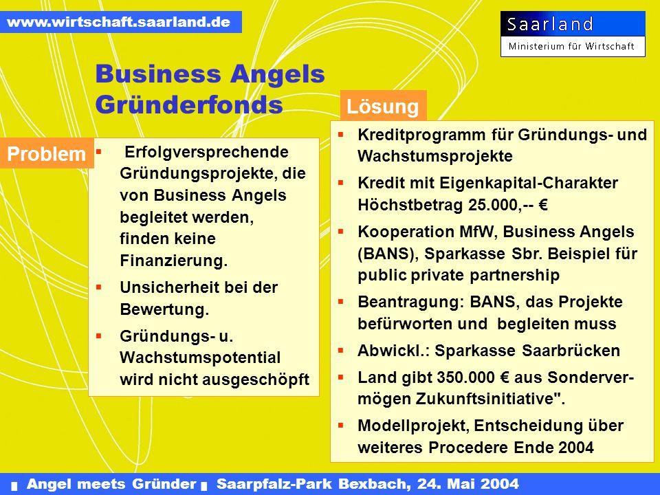 Angel meets Gründer Saarpfalz-Park Bexbach, 24. Mai 2004 www.wirtschaft.saarland.de Verbesserung der Eigenkapitalausstattung Wir brauchen: Mehr Eigenk