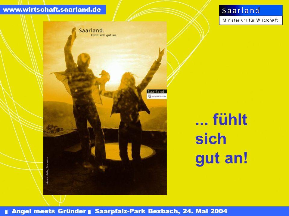 Angel meets Gründer Saarpfalz-Park Bexbach, 24. Mai 2004 www.wirtschaft.saarland.de bis Eigenkapitalanteil von 25 Prozent Steuerfreiheit auf einbehalt