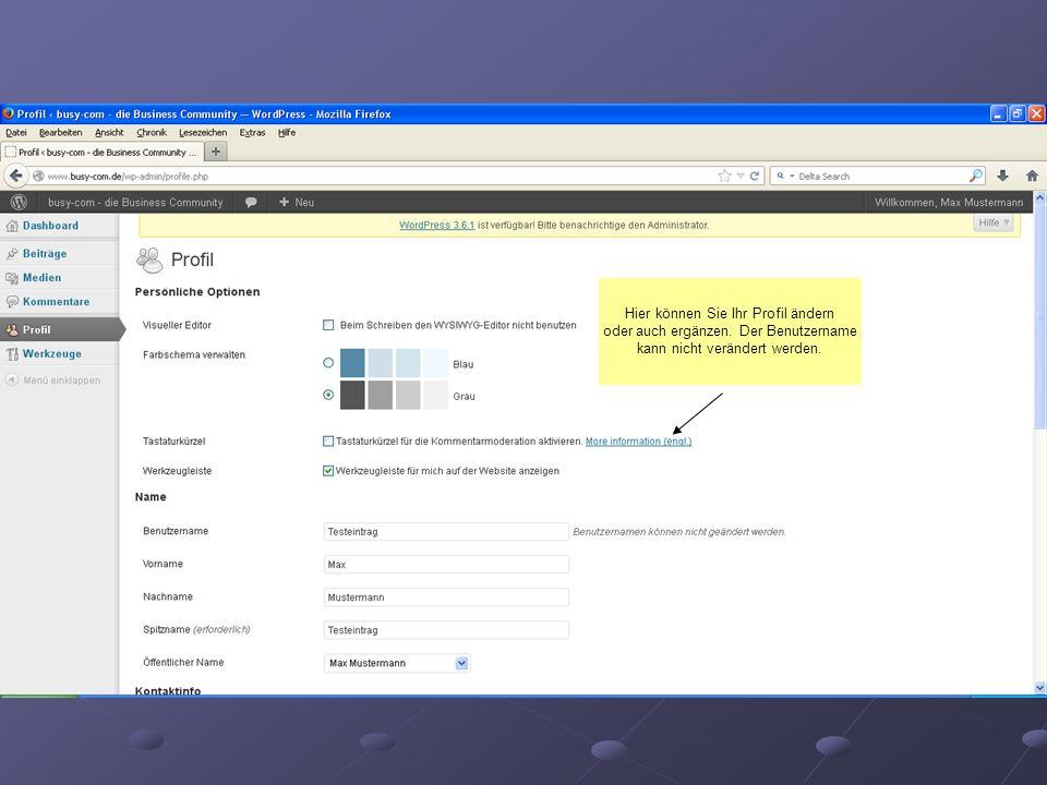 Hier können Sie Ihr Profil ändern oder auch ergänzen. Der Benutzername kann nicht verändert werden.