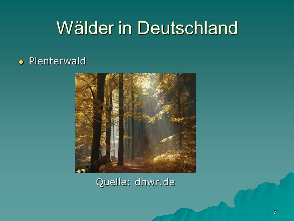 7 Wälder in Deutschland Plenterwald Plenterwald Quelle: dhwr.de Quelle: dhwr.de