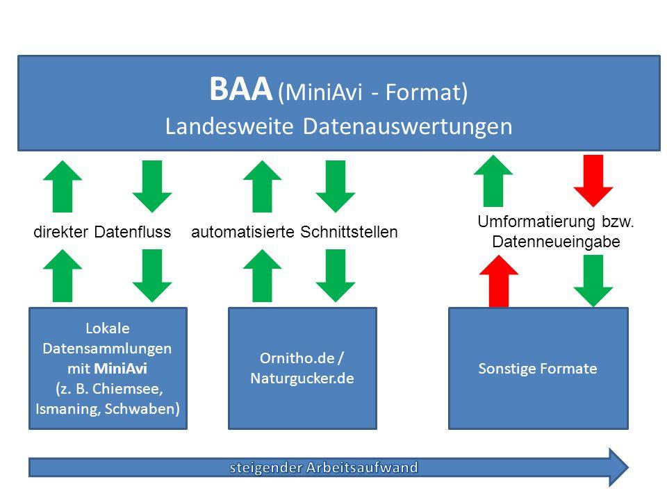 BAA (MiniAvi-Format) Landesweite Datenauswertungen Lokale Datensammlungen mit MiniAvi (z. B. Chiemsee, Ismaning, Schwaben) direkter Datenfluss Ornitho